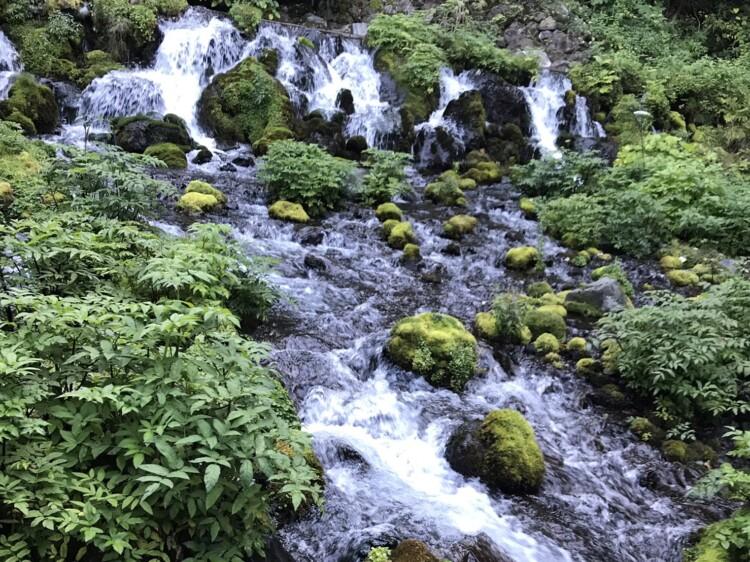 羊蹄山の湧水